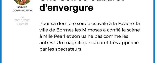 Ville de Bormes-les-Mimosas